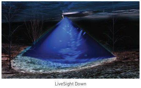 LiveSight Down